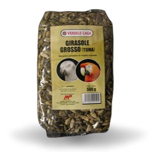 Versele Laga Girasole Grosso Toma 500 gr