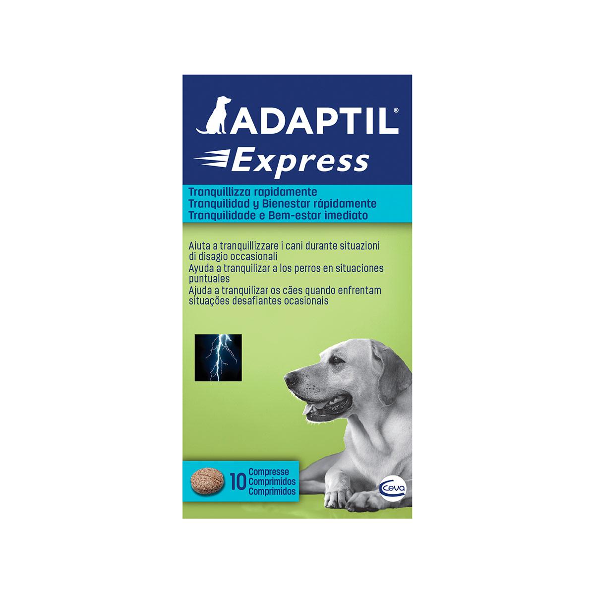 Image of Adaptil Compresse : 10 compresse