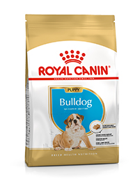 Image of Royal Canin Bulldog Inglese Junior: 3 kg